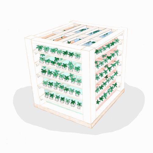 Le poumon vert - We Love Green